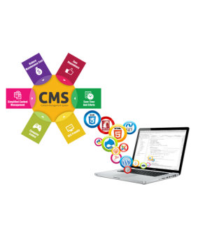 CMS Executive Package